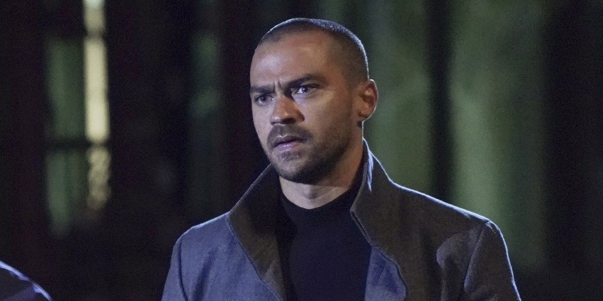 A New Grey's Anatomy Spinoff For Jackson? Here's What Jesse Williams Says