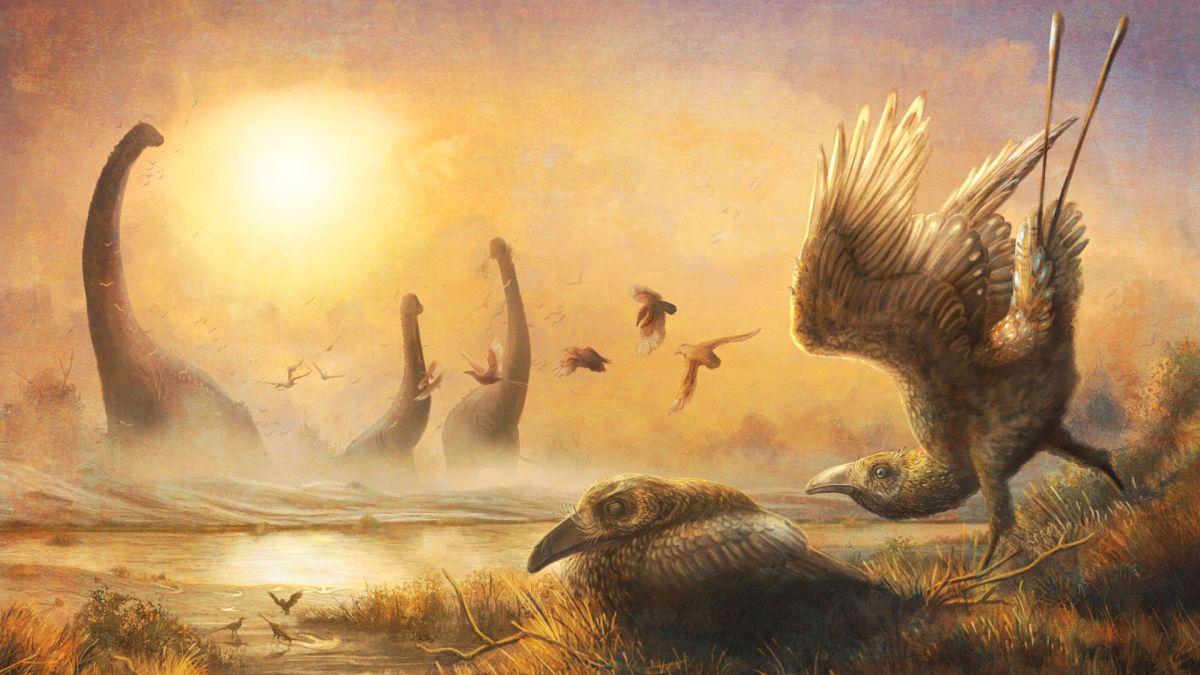 Dino-era bird had the head of a Velociraptor and beak of a toucan - Livescience.com