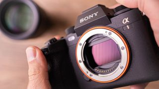 """Sony A1 first verdict: Canon's AF is better, """"30fps failure"""", standard 8K lasts 16 mins"""