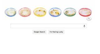 Petri dish google doodle