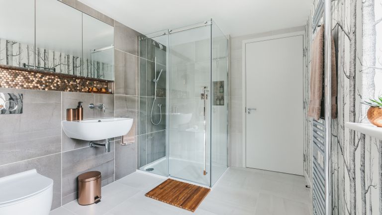 Contemporary style bathroom with walk in shower