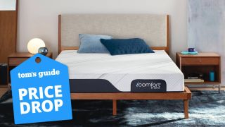 Serta mattress deal