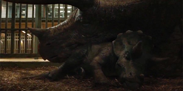 Triceratops and baby in Jurassic World: Fallen Kingdom
