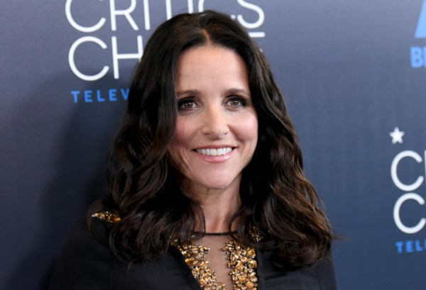 Julia Louis-Dreyfus plays US President Selina Meyer in Veep