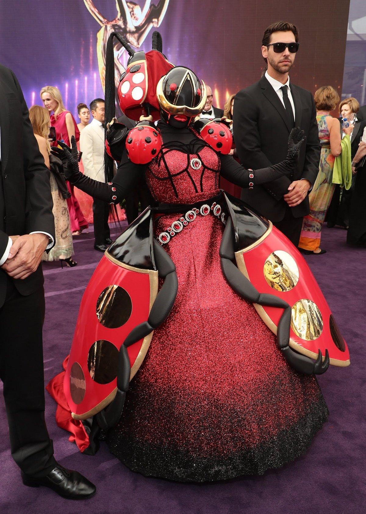 The Ladybug The Masked Singer