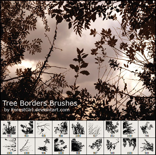 Photoshop brushes: tree borders