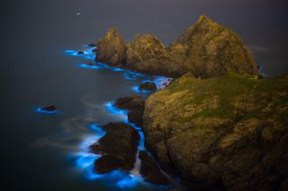 The waves around a set of islands glow neon blue