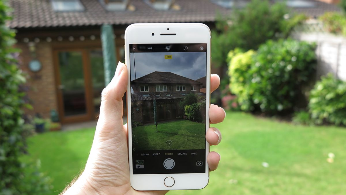 IPhone 7 Plus Camera Samples