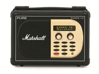 Pure EVOKE-1S Marshall