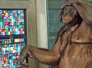 Great Ape Trust
