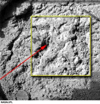 Is There Life on Mars? Looking for Rock Solid Evidence