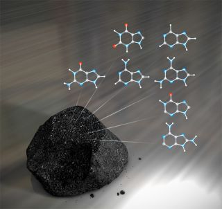 DNA building blocks on meteorite