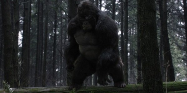 the flash the cw gorilla grodd earth 2