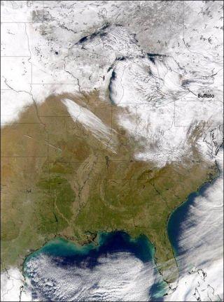 buffalo-snow-101203-02