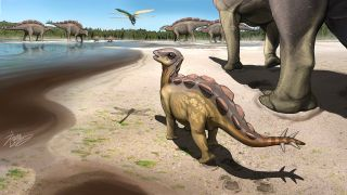 An artist's reconstruction of a baby stegosaur leaving tracks more than 100 million years ago.