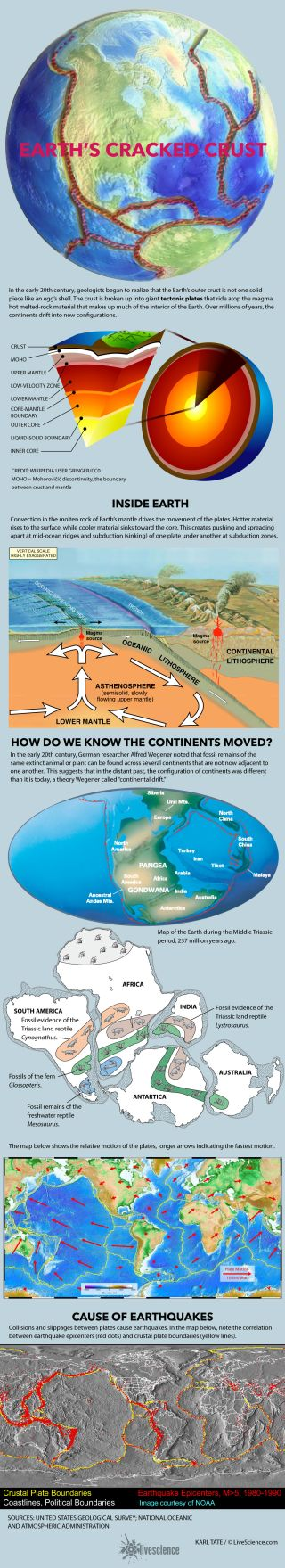 Facts about the tectonic plates.