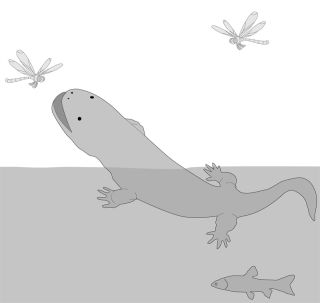 artist's conception of an ancient giant salamander.