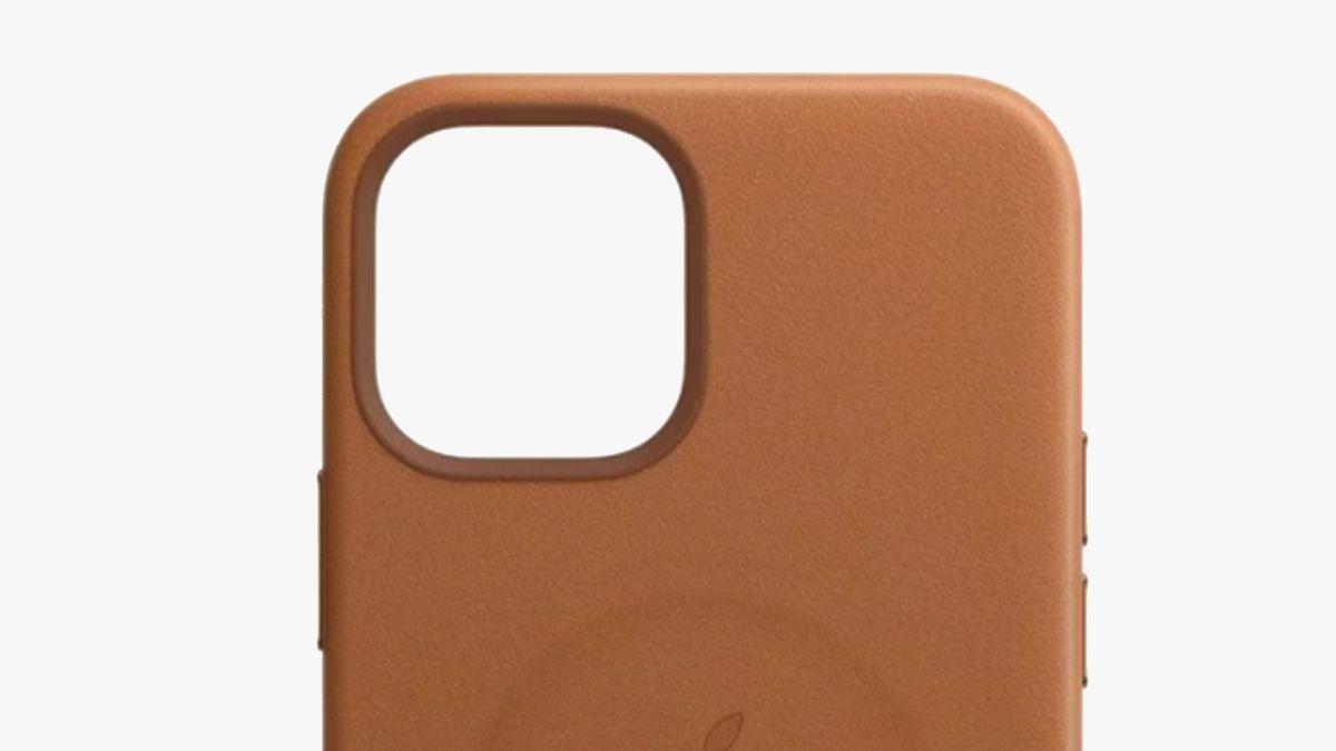Popular iPhone 12 accessory has a BIG design flaw