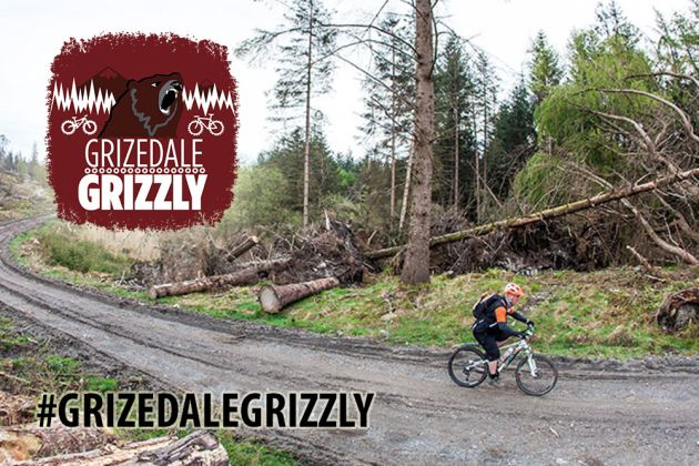 Grizedale-Grizzly