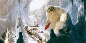 Star Wars Finally Brought Wampas Back To Battle Princess Leia And Chewbacca