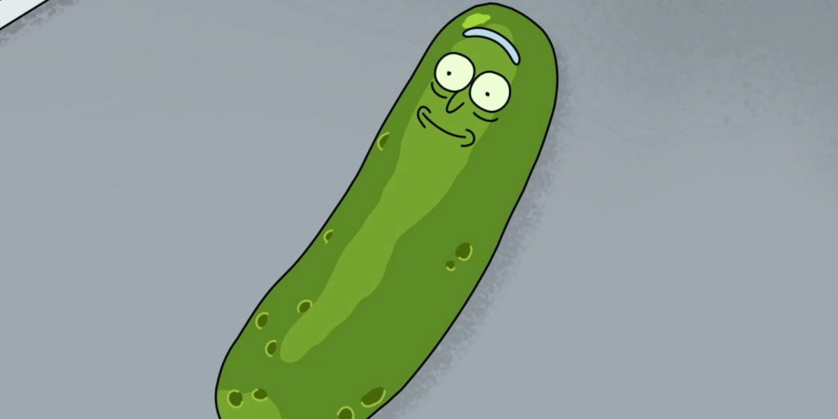 Pickle Rick Rick and Morty Adult Swim