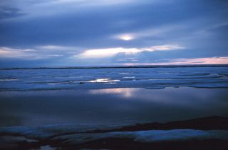Beaufort Sea arctic ice reaches new low