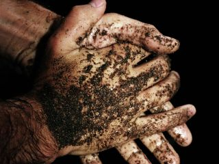 Get your hands dirty dirtying up your sounds