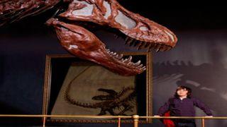 Dinosaur and child