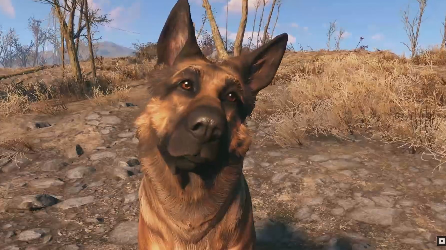 Fallout 4's Dogmeat wins Best Game Dog at the World Dog Awards