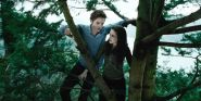 Midnight Sun Is Here And Twilight Fans Are Living For It