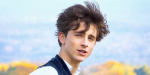 Batman Fan Art Imagines Timothee Chalamet As Robin, And Already Kills Him Off