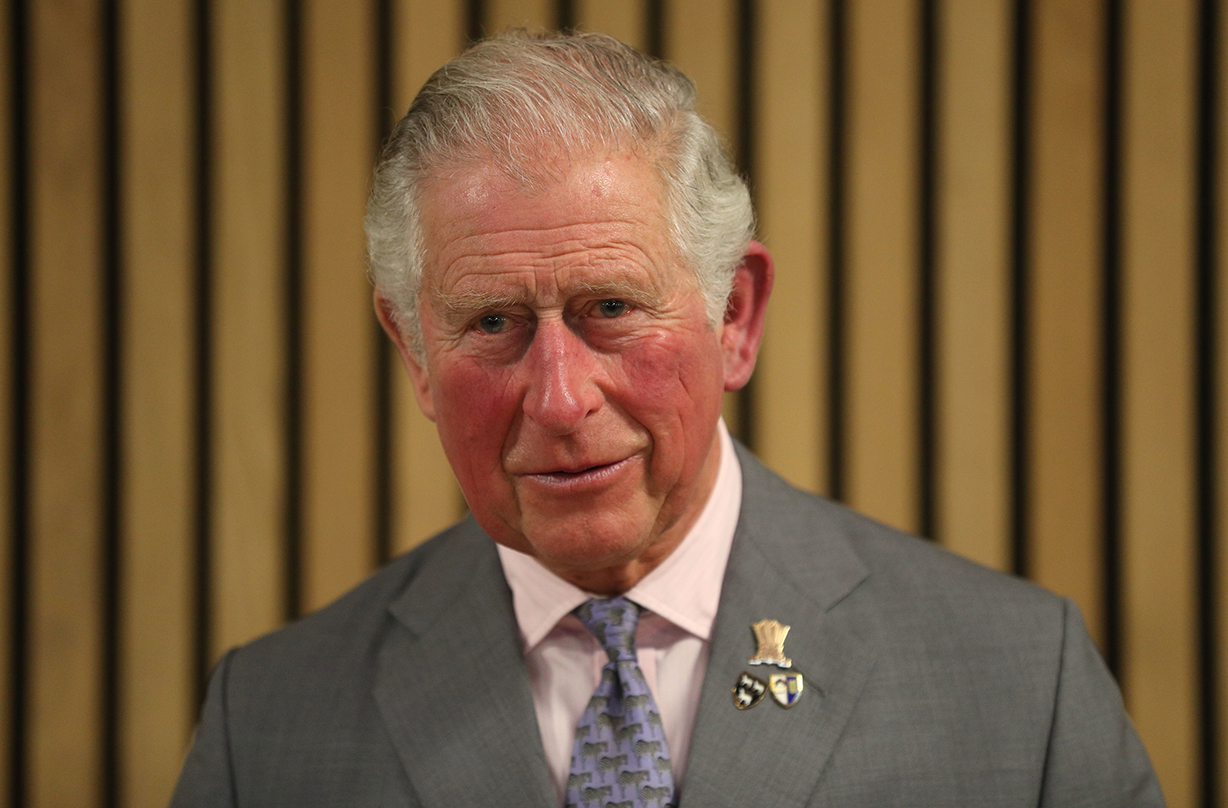 prince charles royal correspondence statement fans