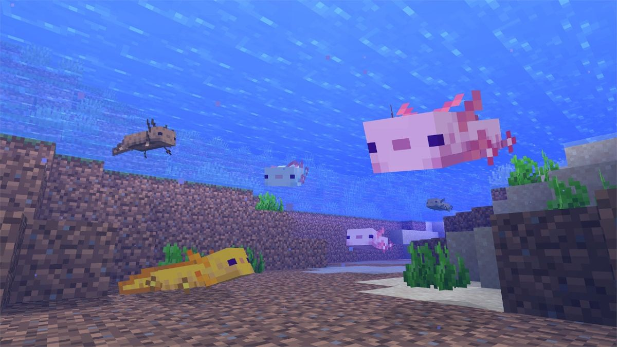 Minecrafter uses 100 adorable axolotls to annihilate the Ender Dragon