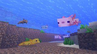 Minecraft 1.17 features