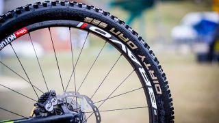 Schwalbe MTB Tyres