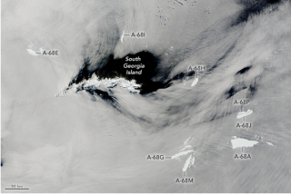 Eleven fragments of the once-mighty iceberg A-68a swirl around South Georgia island, north of Antarctica