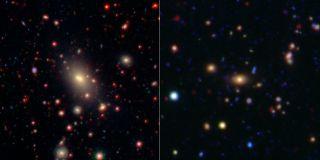 Brightest cluster galaxy