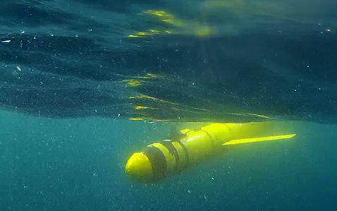 Massive 'Dead Zone' in the Arabian Sea Is the Biggest in the