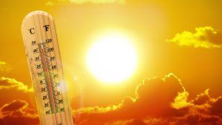 Surviving Heatwave America 2019