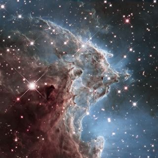 The Hubble mosaic unveils a collection of carved knots of gas and dust in a small portion of the Monkey Head Nebula (also known as NGC 2174 and Sharpless Sh2-252). The nebula is a star-forming region that hosts dusky dust clouds silhouetted against glowing gas.