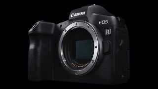 Canon Eos R Vs Eos Rp 10 Key Differences You Need To Know