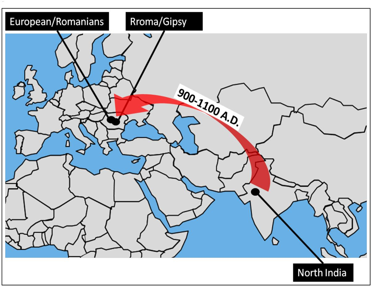 Roma Culture: Customs, Traditions & Beliefs | Live Science