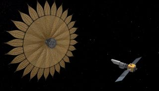 Sunflower-Shaped Starshade