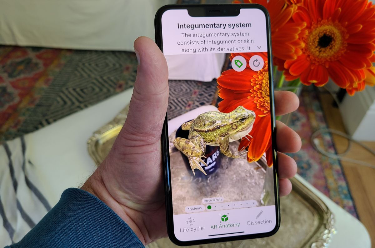 Best iPhone AR apps in 2020