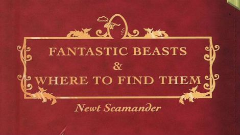 Harry Potter spin-off Fantastic Beasts will be 'at least' a trilogy