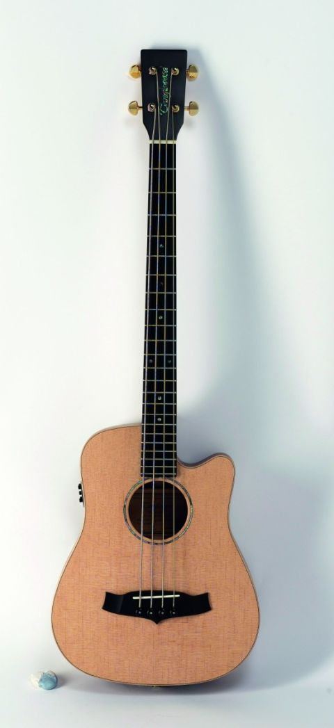 A compact electro-acoustic bass.