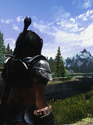 Make Skyrim a whole new game with these mods
