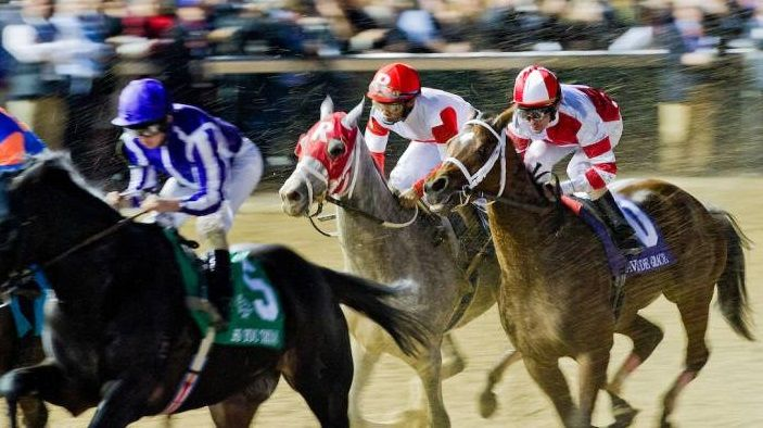 How To Watch The Breeders Cup 2018 Live Stream The