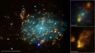 Galaxy NGC 7793