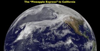 pineapple-express-101222-02